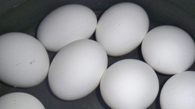 hard-boiled-eggs